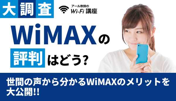 WiMAX_評判の画像
